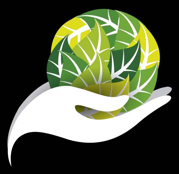 Hosting sostenible